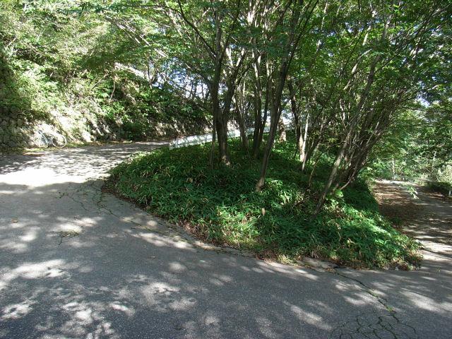 羊腸の峠道