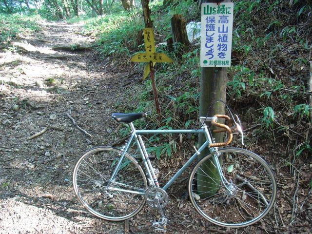 細尾峠(登山道分岐)